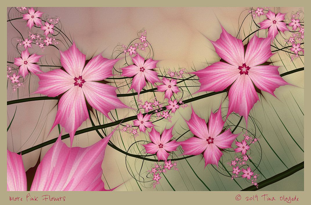 More Pink Flowers by Tina Oloyede