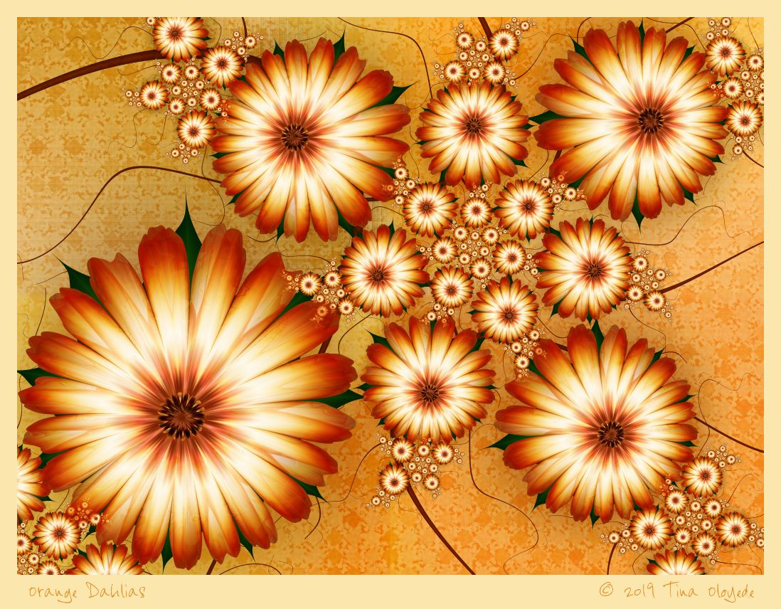 Orange Dahlias by Tina Oloyede